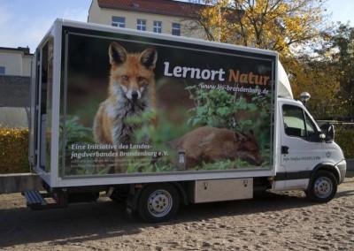 Das Lernort Natur-Mobil kommt auch zu Ihnen!