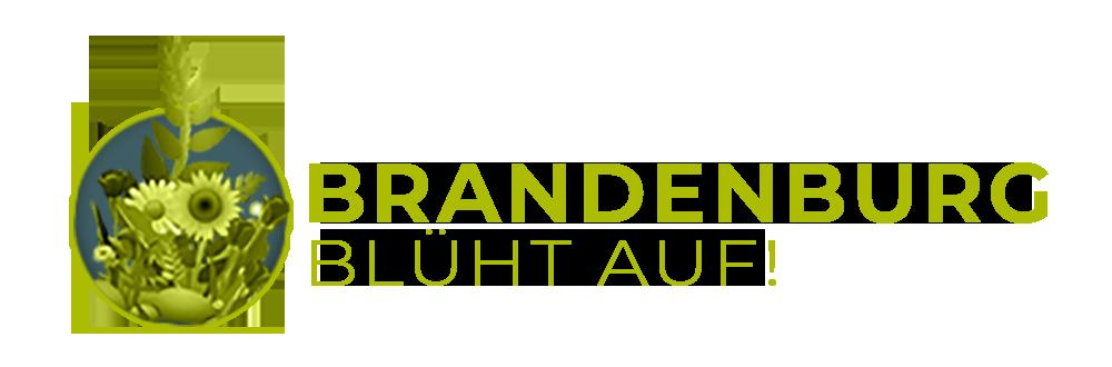 Brandenburg blüht auf !