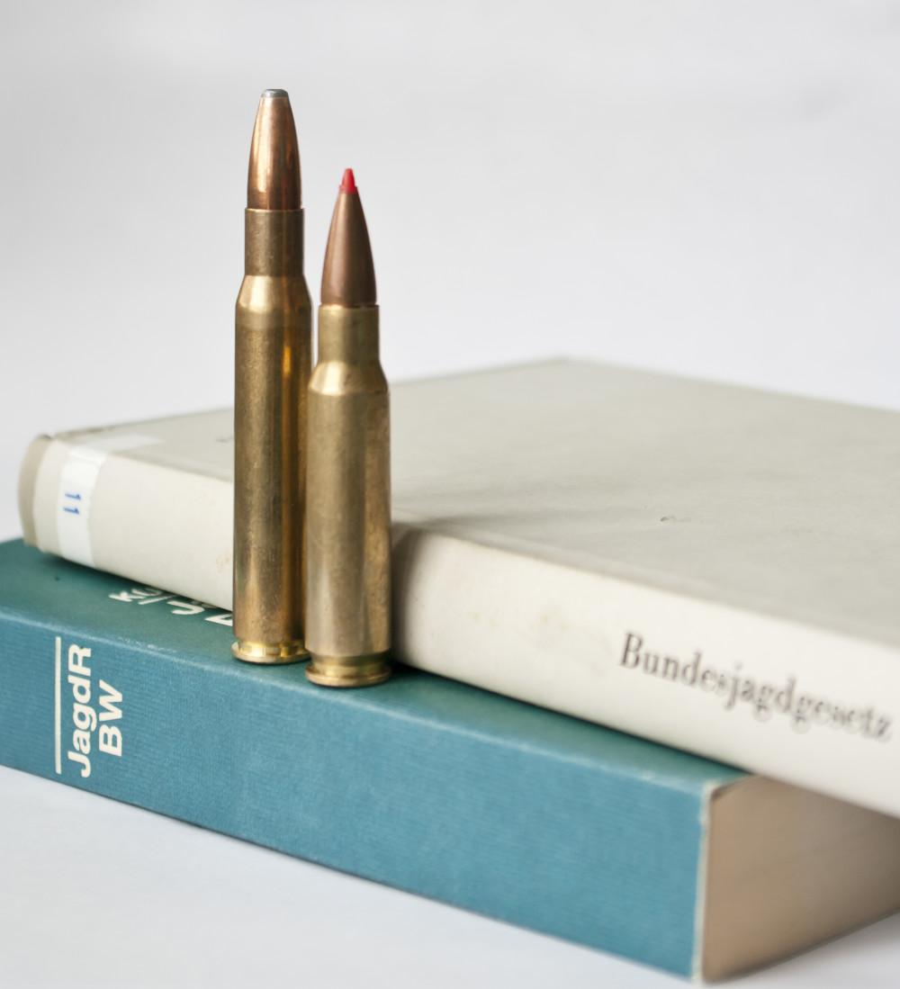 djv_jagdmunition-e1466753277954