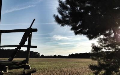 Der Weg zum Jagdschein