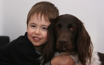 Jagdhund ist Arbeitspartner und Familienmitglied