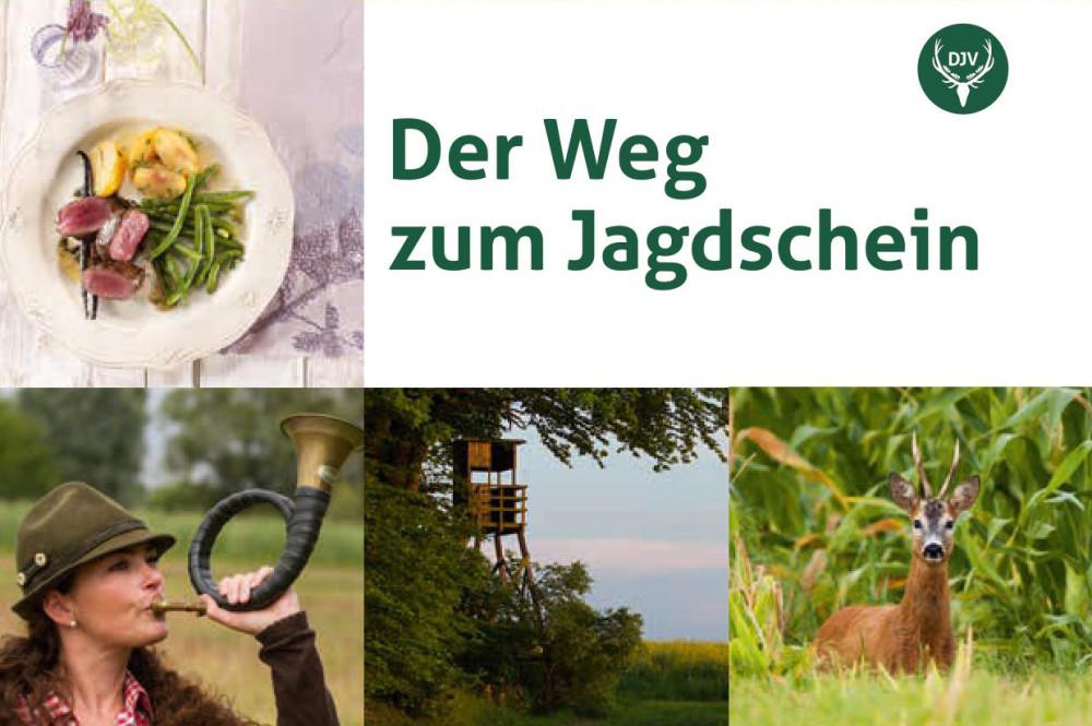 broschure_weg_zum_jagdschein_titel_pm-format-e1483966354875