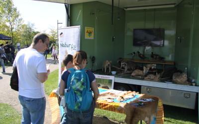 LJVB zu Gast auf dem Potsdamer Umweltfest