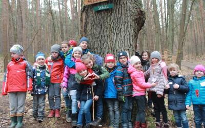 """Pilotprojekt """"Naturakademie für Schulen"""""""