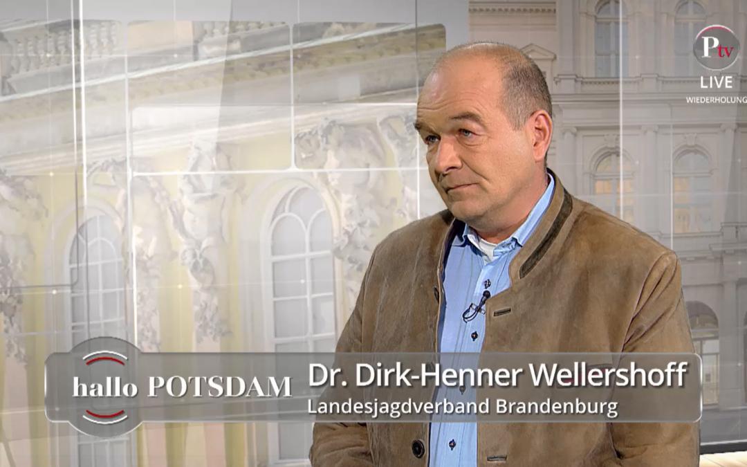 Dr. Dirk-Henner Wellershoff im Interview bei Potsdam TV