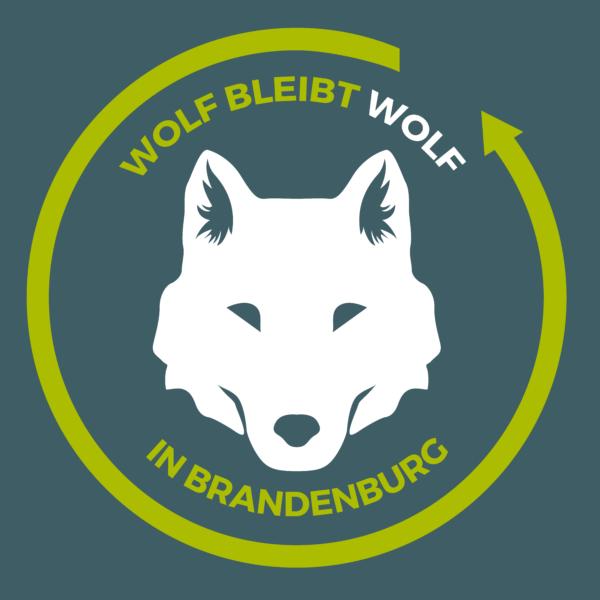 Wolf bleibt Wolf in Brandenburg