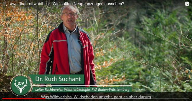DJV-Videoreihe #waldbaumitwaidblick auf Youtube
