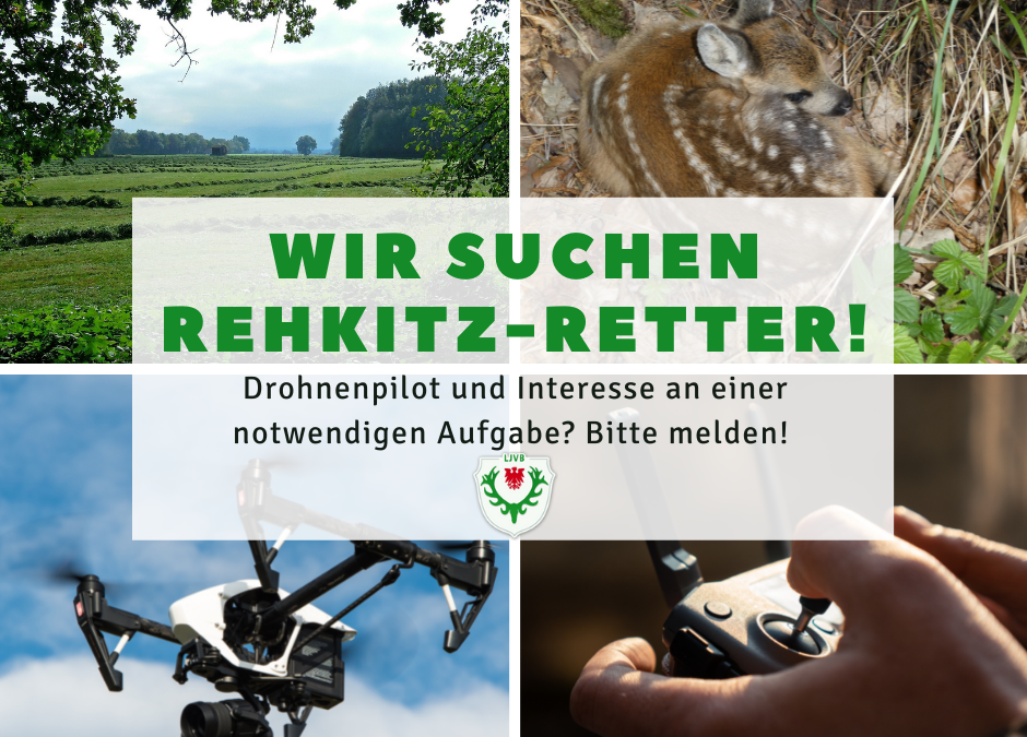LJVB sucht Rehkitz-Retter